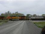 BNSF 4439/CREX 1306