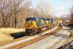 CSX 895 leading mix freight (2)