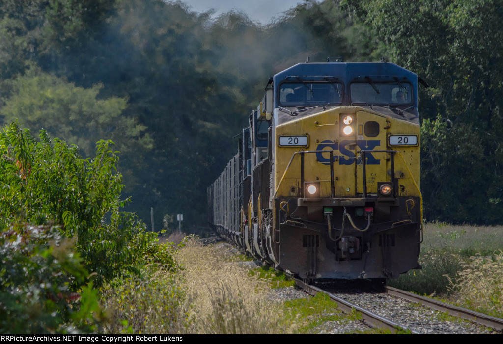 CSX 20 leads T161 on the Branch