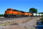 BNSF 7950 and 8989
