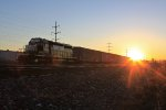 Fresh SD40-2 basks in the sunlight