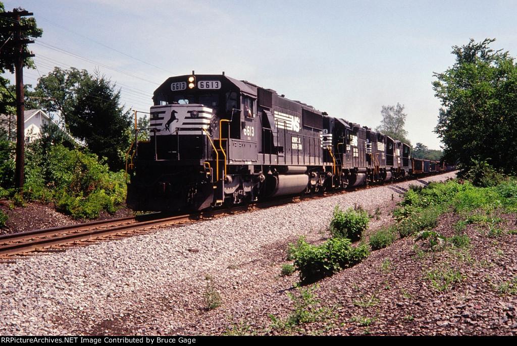 NS 6613