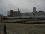 Springfield Yard Area