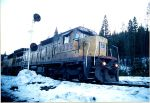 same grain train
