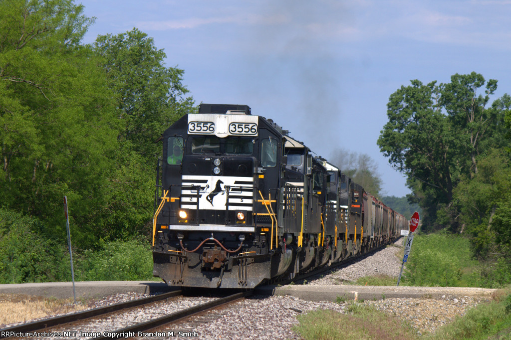 NS 3556 South