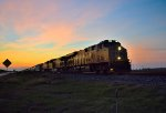 UP 7929 at Sunset