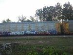 Ferromex Autorack
