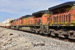 BNSF 5366 Roster.