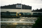 CSX 1239