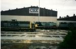 CSX 1239