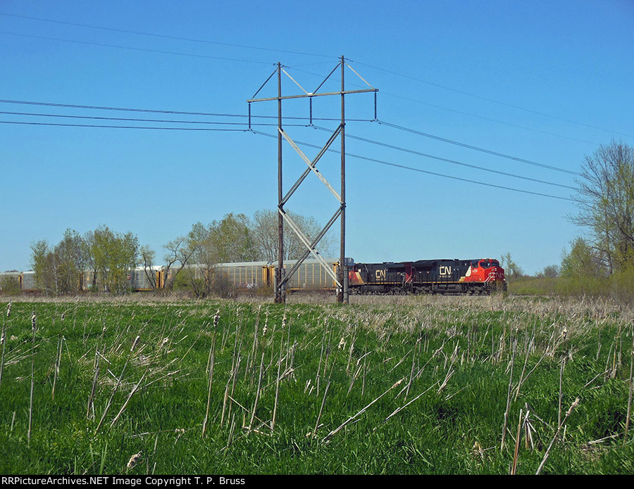 CN 3024 and CN 2804