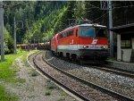 A freight train glides downhill towards Vienna