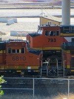 BNSF 793-BNSF 6810