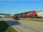 CN 2429 and CN 3044
