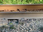 136 lb rail