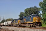 CSXT 3384 On CSX K 810 Northbound