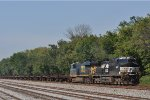 NS 8895 On CSX K 524 Northbound