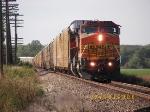 Southbound Autorack Train