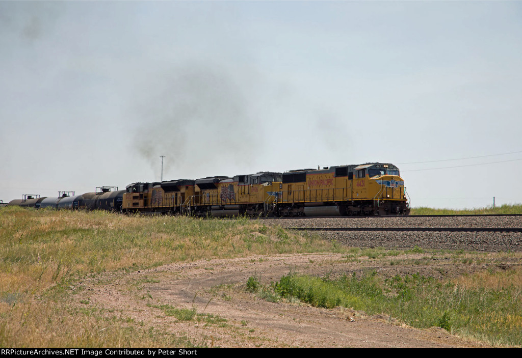 UP4431, UP8976 and UP8432