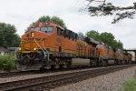 BNSF4266, BNSF4176, CREX1340 and BNSF6562 passing Peck Park
