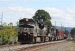 NS 9081 leads train 38G
