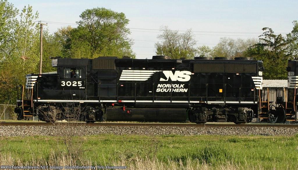 NS 3025 races a bird