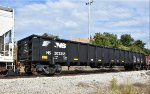 NS 202355 is new to rrpa.