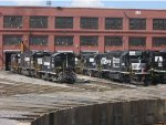 Lineup of Locos