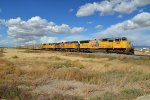 Union Pacific 3919 East