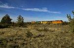 BNSF 4685 W/B