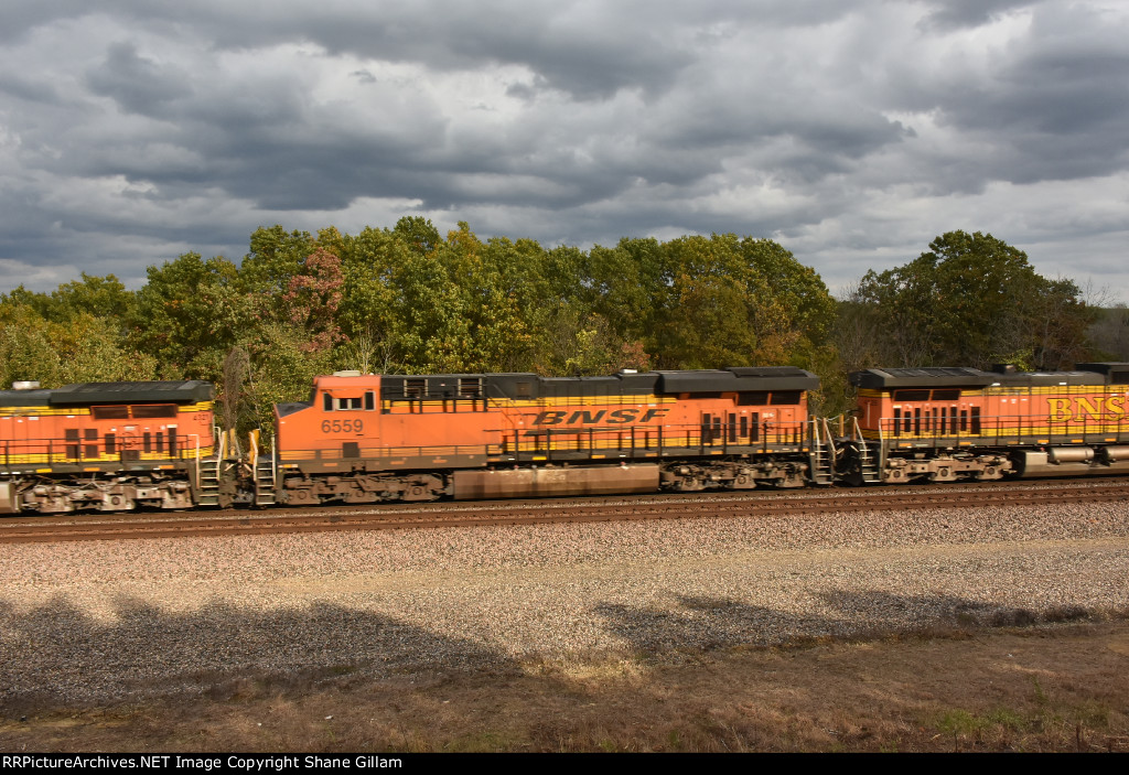 BNSF 6559 Roster.