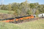 BNSF 8082 Roster.