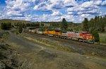 BNSF 874 West