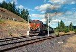 BNSF 994 West