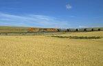 BNSF 5600 West
