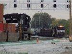 NS 9905 and NS 2732