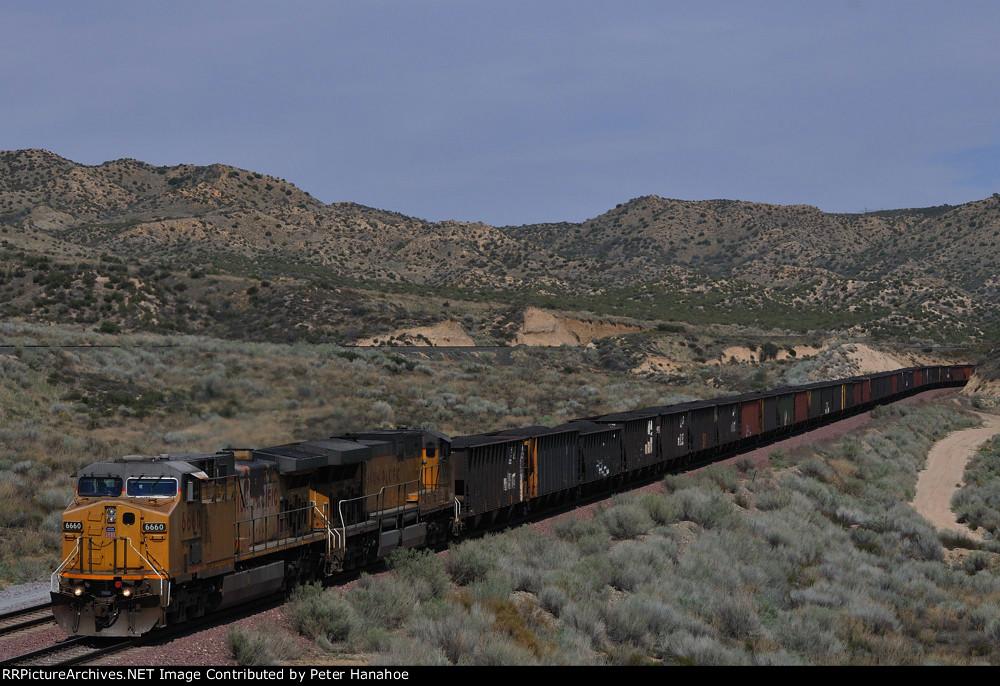 California Coal