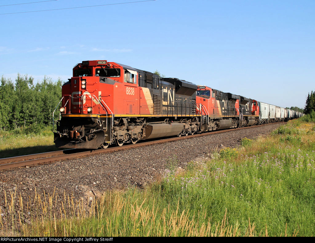 CN 8838