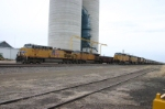 UP 6050 waits with empties