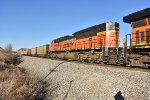 BNSF 8599 Roster.