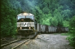 NS 648 - On the Move