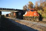 Southbound CN freight