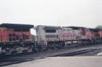 BNSF 828