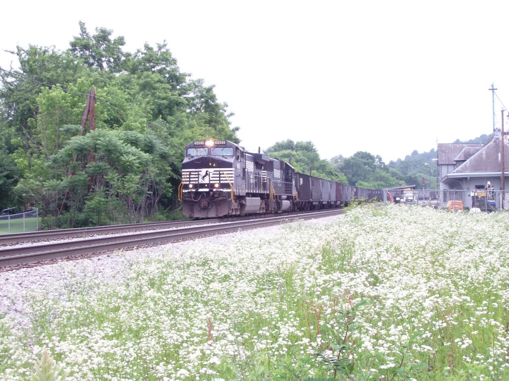 Blooms & Trains