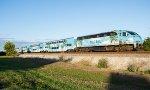TRCX 825 pushes a train north