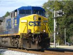 CSX 313 leads a soutbound