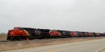 6 heads wait for a SB intermodal led by CN 2901