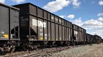 NS 302346 is new to rrpa.