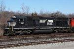 NS 7029