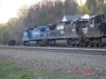 NS 8403 & NS 8674 head WB